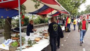 Rijswijk Festiwal, 12.09.2015